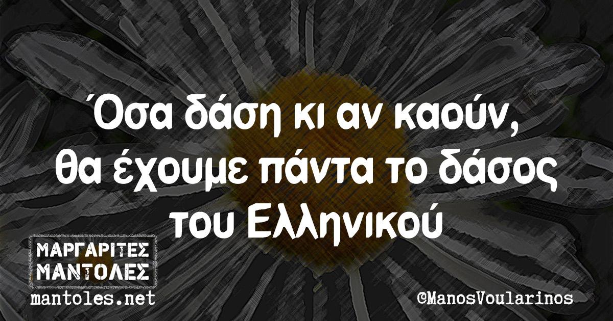 Όσα δάση κι αν καούν, θα έχουμε πάντα το δάσος του Ελληνικού