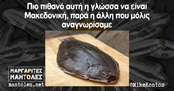 Πιο πιθανό αυτή η γλώσσα να είναι Μακεδονική, παρά η άλλη που μόλις αναγνωρίσαμε