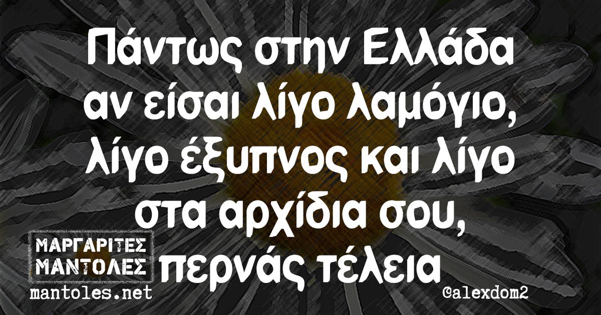 Πάντως στην Ελλάδα αν είσαι λίγο λαμόγιο, λίγο έξυπνος και λίγο στα αρχίδια σου, περνάς τέλεια
