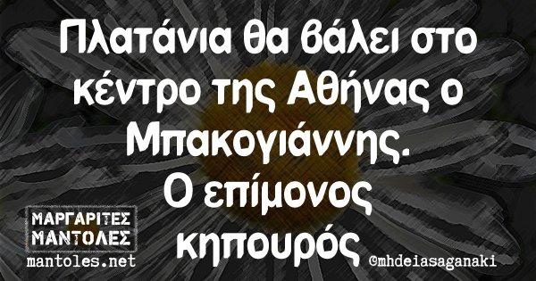 Πλατάνια θα βάλει στο κέντρο της Αθήνας ο Μπακογιάννης. Ο επίμονος κηπουρός